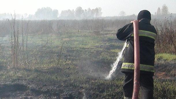 ВКиеве около Берковецкого кладбища произошел масштабный пожар