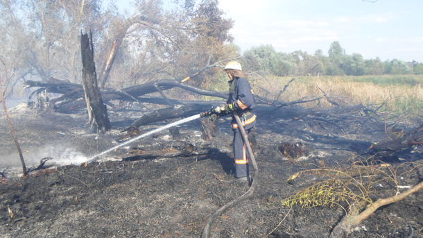 ВКиевской области появился пожар намусорной свалке