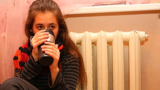 Киевские учебные заведения и клиники начали подключать котоплению