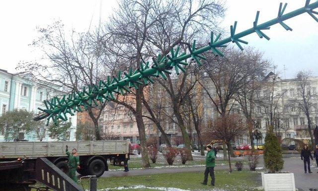 Многострадальная елка-путешественница заняла свое место наСофийской площади