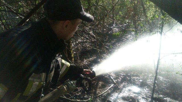 ВКиеве наТрухановом острове полыхает  трава