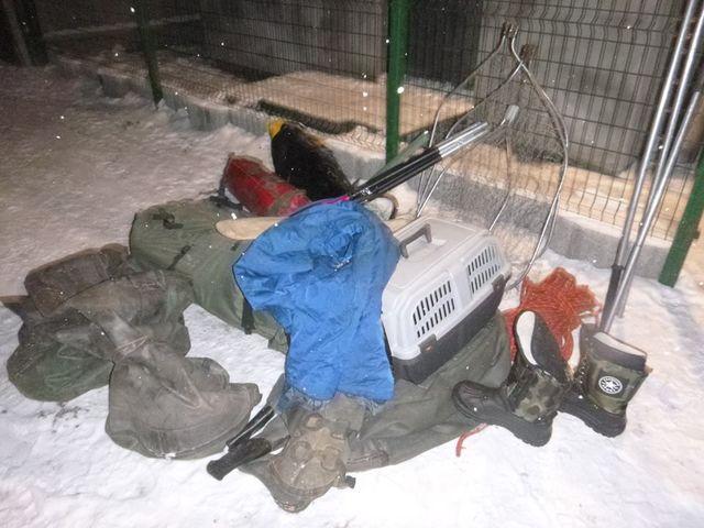 Под Киевом cотрудники экстренных служб достали лебедя изледяного озера